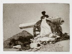 2015-02-Goya-Desastres