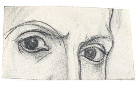 2016-08-Picasso-Los ojos del artista 464